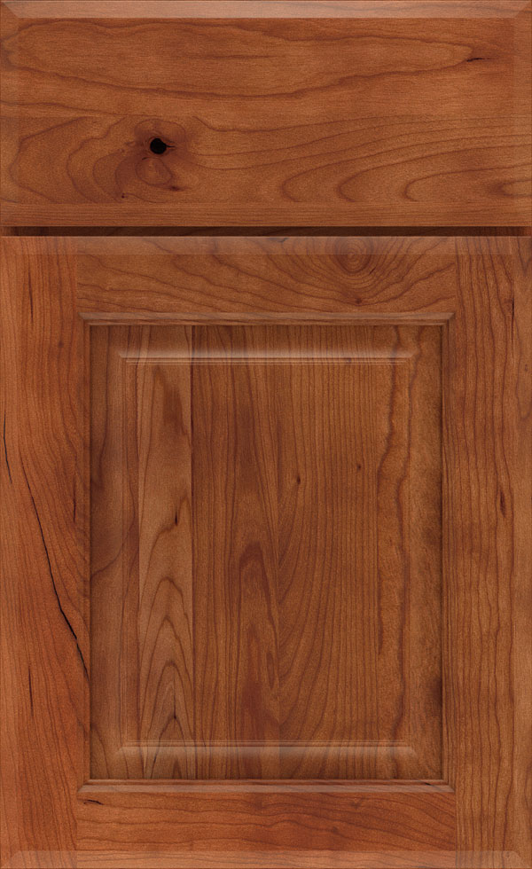 birkdale_cherry_raised_panel_cabinet_door_cattail